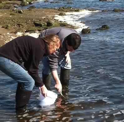 ecological testing